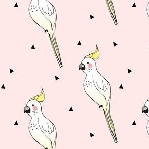 parrot pink - elvelyckan