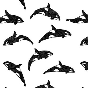 Orca / Killer Whale - Black and White by Andrea Lauren