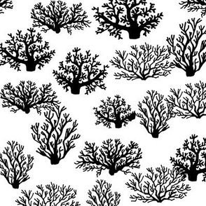 Coral Reef - Black and White by Andrea Lauren