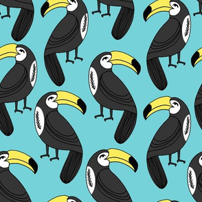toucan // toucans aqua teal turquoise bird tropical summer cute toucans