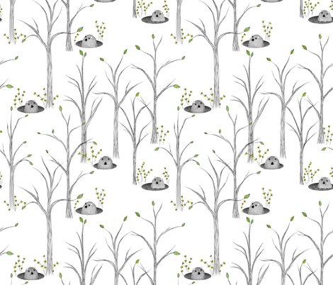 Rrrgroundhog_is_it_spring_yet_2-01_shop_preview