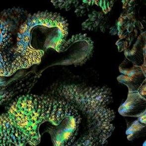 Haeckel Aquatica ~ Coral ~ Black Light