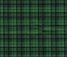 Rgreen_plaid_small_pt_comment_539087_thumb