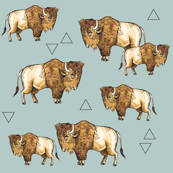 Buffalo + Triangles on Blue