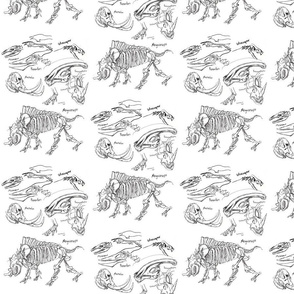 dinosaur sketches white