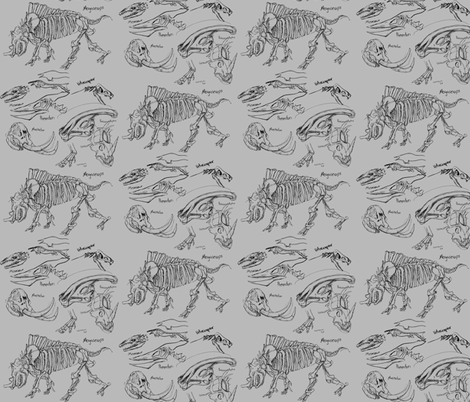 Natural History Sketches fabric by craftyscientists on Spoonflower - custom fabric