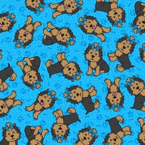 Yorkie Party (Blue)