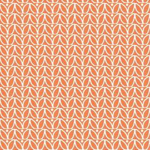 Orange Petals White Lines