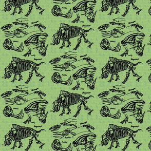 dinosaur sketches green