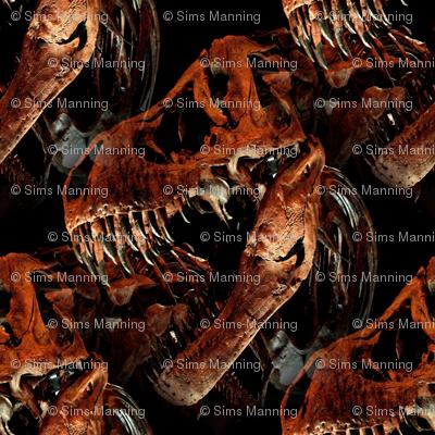 Houston Museum of Natural Science Dinosaur