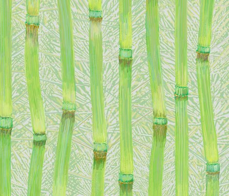 Horsetail-fronds-h_shop_preview