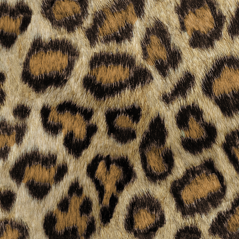 Etosha Leopard fabric by willowlanetextiles on Spoonflower - custom fabric