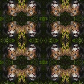 TigerPattern1