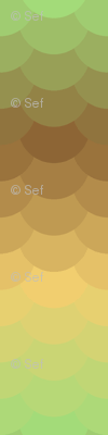 03880655 : serenely basking