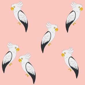 Birds, pink
