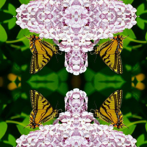 Pollination Series 1 of 3 Mirror - Lrg