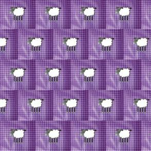 Sheep on purple