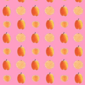Chickie's fruits on bright pink