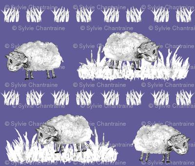 SOFT AS A CLOUD SHEEP Field BW on Lilac Blue