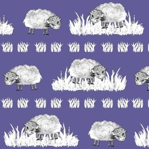 SOFT AS A CLOUD SHEEP Field BW on Lilac Blue