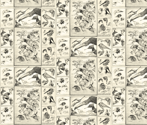 birdsgold2 fabric by craftyscientists on Spoonflower - custom fabric