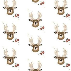 Deerspring