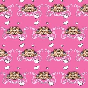 Piccolo Pink, Small Print
