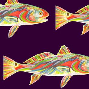 redfishpurpleback