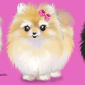 Pomeranians Pink Small Print