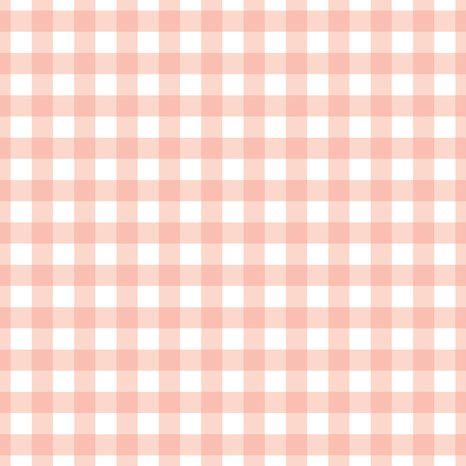 Rcoral_gingham.ai_shop_preview
