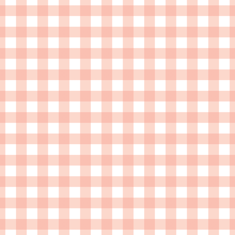 Coral Gingham fabric by mainsail_studio on Spoonflower - custom fabric