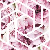 Hexagon Roses
