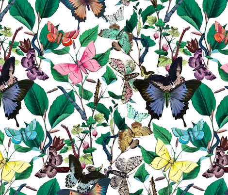 Butterfly Sanctuary  fabric by peacoquettedesigns on Spoonflower - custom fabric