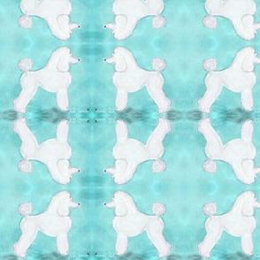 Aqua Poodle