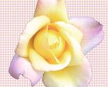 Rrrose3_ed_thumb