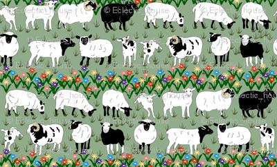 Sheep Stripe