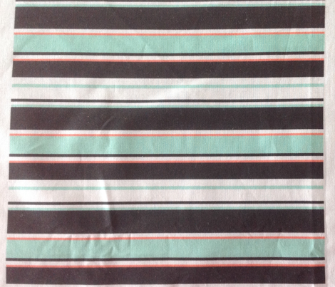 Mint Slice Stripes