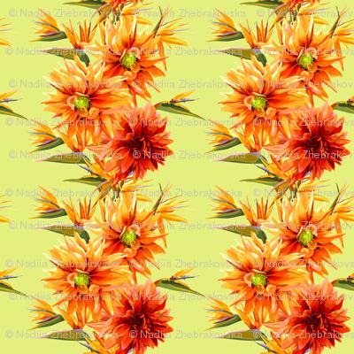 seamless_patter_of_strelitzia_and_dahlia_flowers