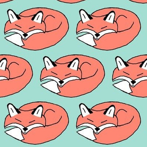 Mint and Coral Sleeping Fox