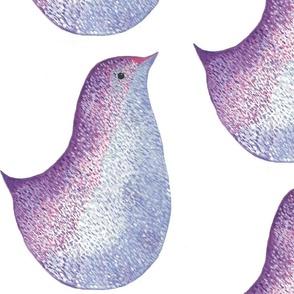 water color bird