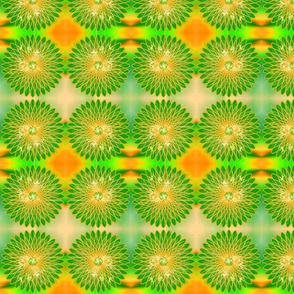 Citrus Blooms