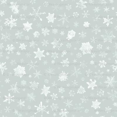 photographic snowflakes on ice grey