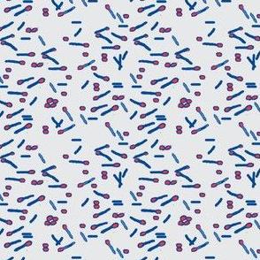 Clostridium botulinum sporogenes