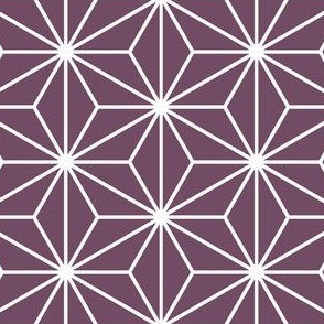 03917712 : SC3C isosceles : aubergine grape