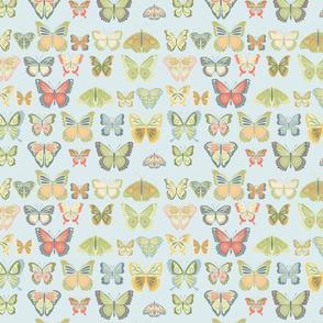 fly_buterfly_bleu_M