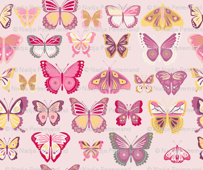 fly_buterfly_rose_L