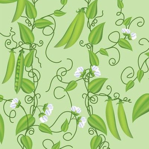 Pea Vines Rambling Over Green