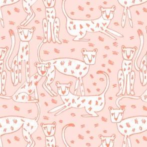 Weekend Cheetah