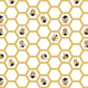bees-in-comb