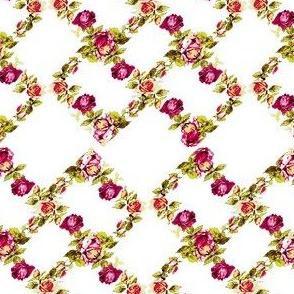 Vine Roses